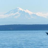 The magnificent Mount Baker