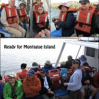 We boarded two vessels for our trip to Montague Island.