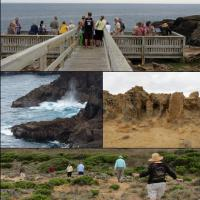 Some of the group toured Cape Bridgewater's blowhole and petrified forest.