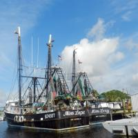 Part of the fishing fleet in Tarpon Springs