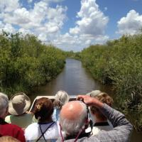 View of Everglades Channel