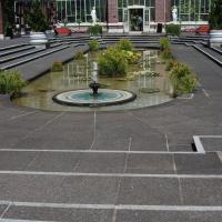 Domain Wintergarden in Auckland