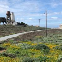 Piedras Blancas Lightouse and Water Tower