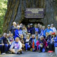 A mini group shot at the Chandelier Tree