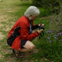 Malea taking photos of some flowers at St Marks