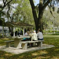 Lunch at a Suwannee River picnic ground