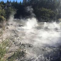 Mud Pools near Rotorua