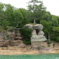 One of the most interesting sites was a tree growing on a rock outcropping while the roots reached to the 30 feet to the cliff.