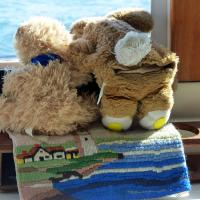 Tour mascots, Bosley and Valentino watching for sea creatures.