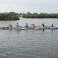 Tarpon Springs Canoe Club working out on the Anclote River