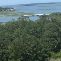 View from the top of Assateague Lighthouse