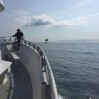 First sight of Chesapeake Lighthouse