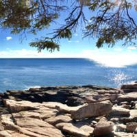 More views from Acadia National Park