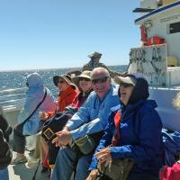 The 2 hour ride to the Farallon Islands was a little rough, but most folks just sat back and took in the sunshine.