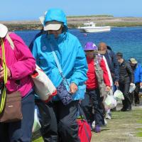 Marching up the hill on Inner Farne Island preparing to battle the birds!