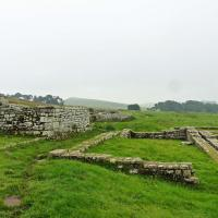 On our free day some took the side trip to the Housesteads Roman Fort at Hadrian's Wall