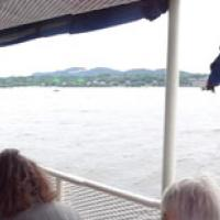 Panorama shot of our cruise out of City Isle, Bronx, NY