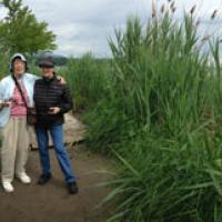 Peggy and Virginia on the trail to Saugerties Lighthouse