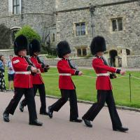 Windsor Castle Guards.